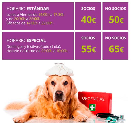 Tarifas de urgencias veterinarias en sevilla