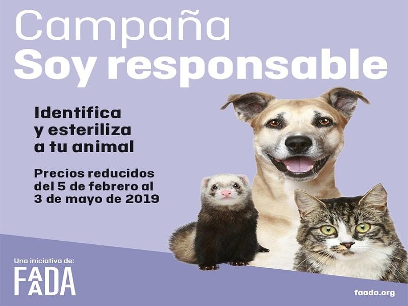 campaña FAADA, campaña de identificación y esterilización de mascotas