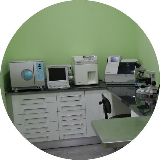 laboratorio-veterinario